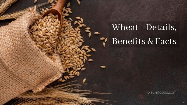 Wheat - Details, Benefits & Facts
