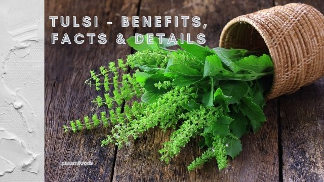 tulsi benefits facts and details