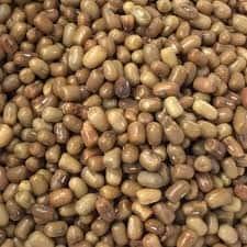 Turkish gram / Moth bean